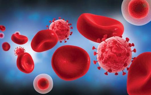 血小板为什么会减少?血小板减少的危害是什么?